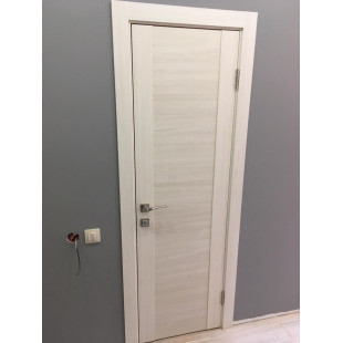 фото двери 20х эшвайт мелинга в интерьере